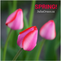 Spring's Potential – Things to enjoy this favourite season